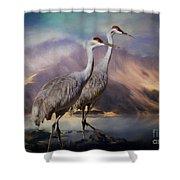 Rocky Mountain Sandhill Cranes Shower Curtain