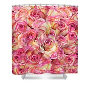 Roses Background Shower Curtain