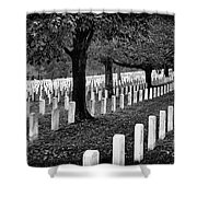 Rows Of Honor Shower Curtain