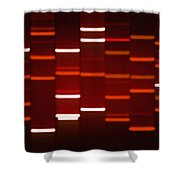 Ruby Red  Shower Curtain