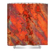 Rust Abstract Shower Curtain