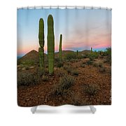 Saguaro Dusk Shower Curtain