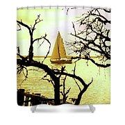 Sailboat Golden Sunset Shower Curtain