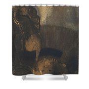 Saint George And The Dragon Shower Curtain
