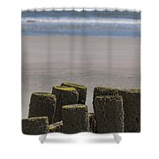 Salty Shores Shower Curtain