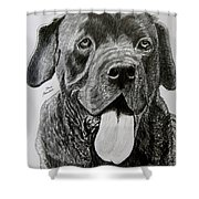 Sampson Shower Curtain
