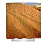 Sand Dune At Great Sand Hills In Scenic Saskatchewan Shower Curtain