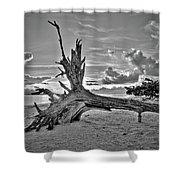 Sanibel Sunrise Shower Curtain