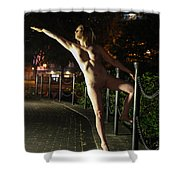 Satine Spark Shower Curtain