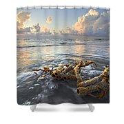 Sea Jewel Shower Curtain