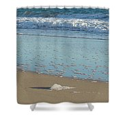 Seafoam Detail On Waters Edge Shower Curtain