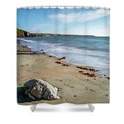 Seascape Wales Shower Curtain