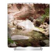 Sedona River Rock Shower Curtain