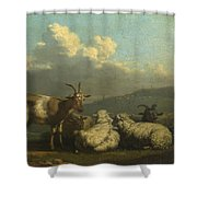 Sheep And Goats Shower Curtain