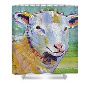 Sheep Head Shower Curtain