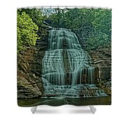 Shequaga Falls Shower Curtain