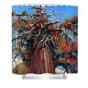 Sierra Juniper Shower Curtain