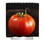 Single Fresh Tomato With Dew Drops Shower Curtain
