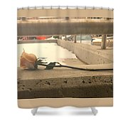 1 Single Lonely Rose Shower Curtain