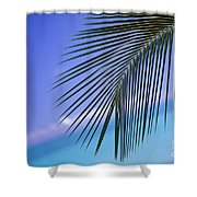 Single Palm Frond Shower Curtain