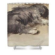 Slapende Hond Shower Curtain