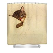 Sleep Like A Kitten Shower Curtain