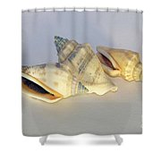 Small Decorations Shower Curtain