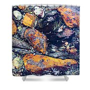 Small Rocks On The Beach Shower Curtain