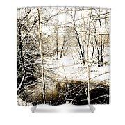 Snow-covered Stream Banks, Pennsylvania Shower Curtain
