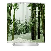 Snow In The Forest Shower Curtain