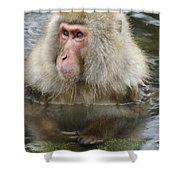 Snow Monkey Bath Shower Curtain