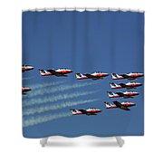 Snowbirds In Flight Shower Curtain