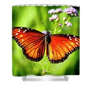 Soldier Butterfly Shower Curtain
