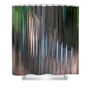Southern Glow Shower Curtain