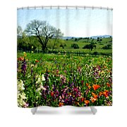 Spring Bouquet At Rusack Vineyards Shower Curtain