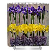 Spring Delights Shower Curtain