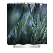 Spring Grass Emerging Shower Curtain