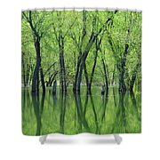 Spring Green Reflections  Shower Curtain by Lori Frisch