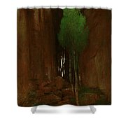 Spring In A Narrow Gorge  Shower Curtain