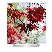 Spring Xxv Shower Curtain