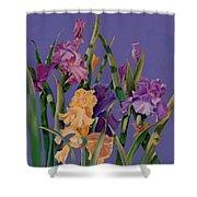 Spring Recital Shower Curtain