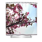Spring Time Series Painting Shower Curtain