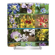 Spring Wildflowers II Shower Curtain