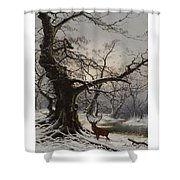 Stag In A Snow Covered Wooded Landscape Shower Curtain