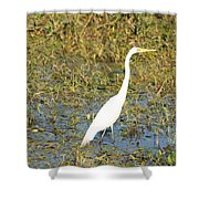 Stand Straight Shower Curtain