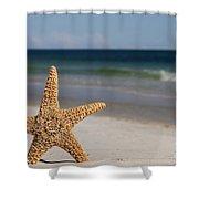 Starfish Standing On The Beach Shower Curtain