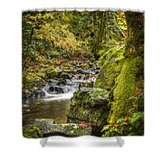 Starvation Creek Shower Curtain
