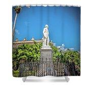 Statue Shower Curtain