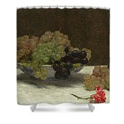 Still Life With Grapes And A Carnation Shower Curtain