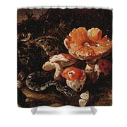 Still Life With Serpents, Fly Agarics And Thistles Shower Curtain